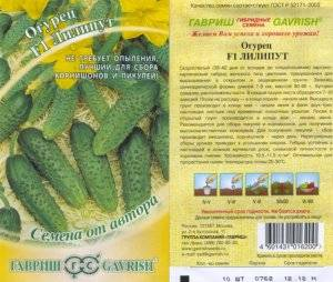 Урожайный сорт огурца «мирабелла f1»: идеален для консервирования