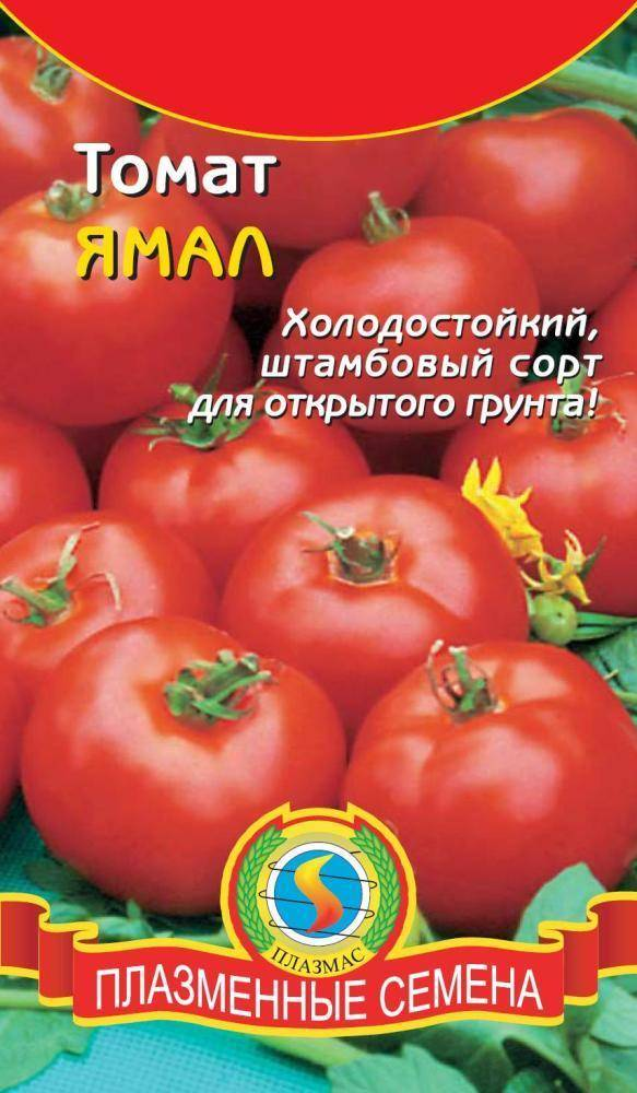 Низкорослый сорт томата «ямал»: фото, видео, отзывы, описание, характеристика, урожайность