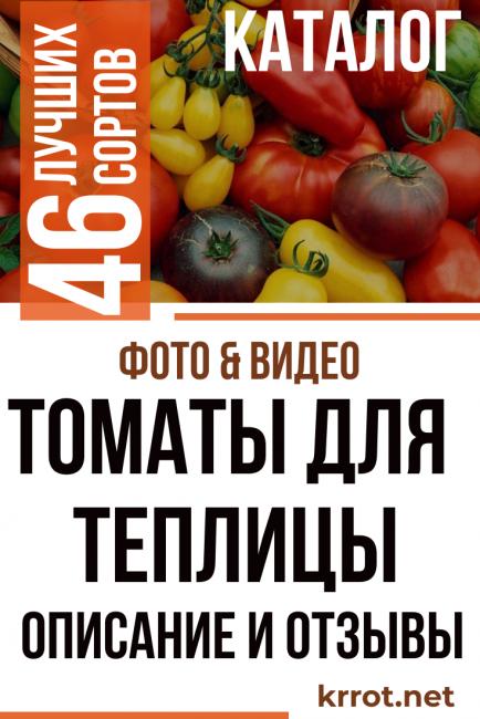 Сорт томата «кострома»: описание, характеристика, посев на рассаду, подкормка, урожайность, фото, видео и самые распространенные болезни томатов