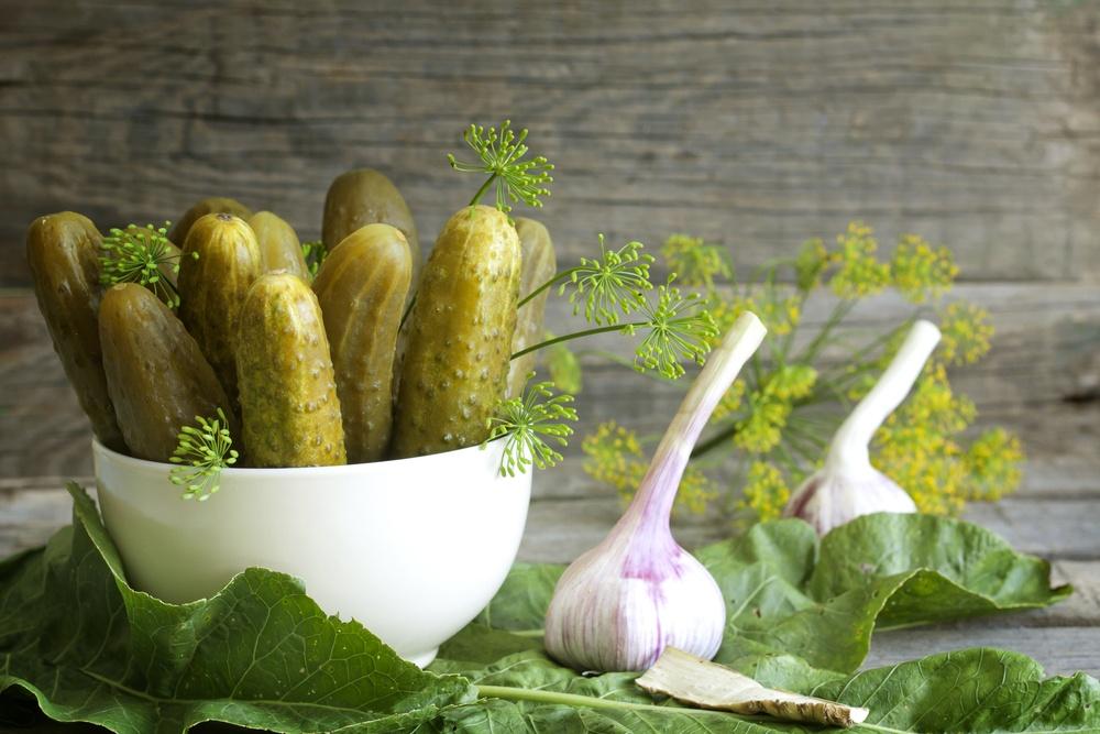 15 лучших рецептов приготовления маринованного зеленого лука на зиму