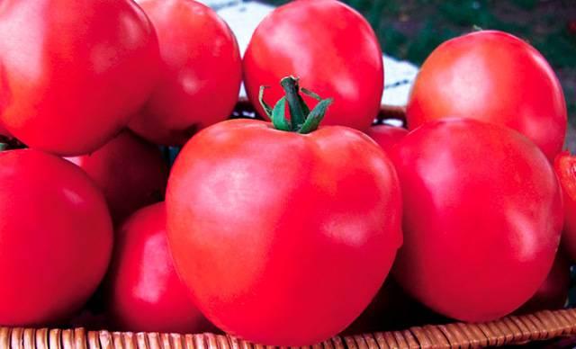 Характеристики и описание сорта томата малиновый закат