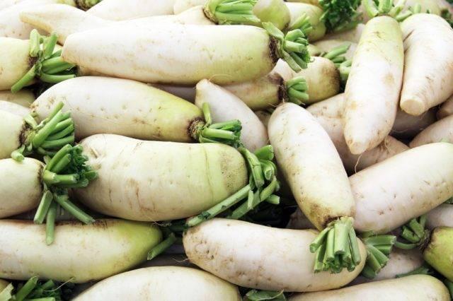 Как лучше сохранить морковь на зиму в погребе, как лучше это сделать в домашних условиях?