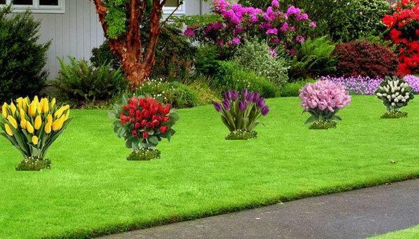 Как красиво посадить тюльпаны. оригинальные идеи.