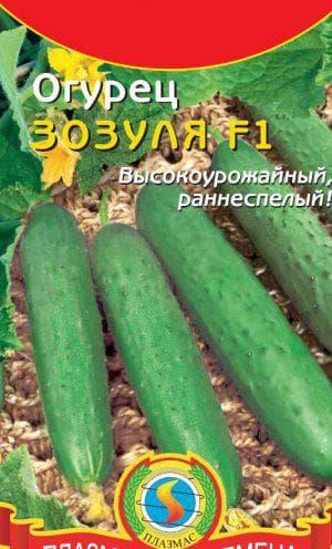 Выращивание огурца зозуля