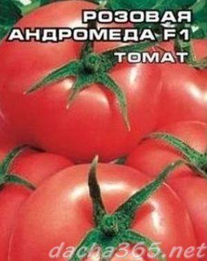 Разновидности томат «андромеда f1»