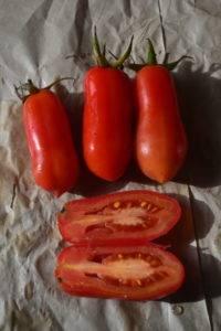 Описание и характеристики сорта томата Сан-марцано