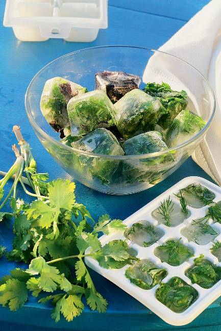 4 способа как правильно заморозить зелень на зиму в холодильнике