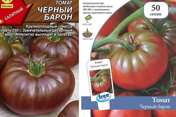 Томат казацкий: особенности сорта, описание, урожайность, отзывы