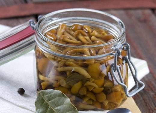 Опята маринованные на зиму (простые рецепты приготовления в домашних условиях)