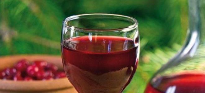 10 простых пошаговых рецептов вина из ранеток и как сделать в домашних условиях