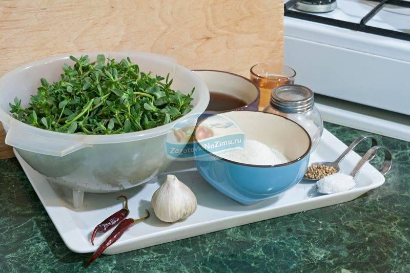Как засолить портулак на зиму простые рецепты