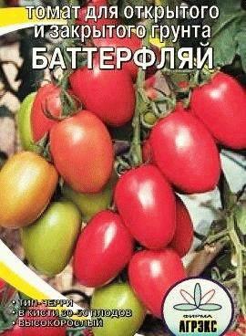 Томат флорида (f1): описание помидоров, его плюсы и минусы, секреты успешного выращивания, сорт-тезка флорида петит