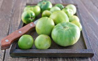 У томатов почернели листья — можно ли спасти урожай?