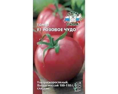 """Томат """"розовое чудо"""": характеристика и описание сорта, отзывы, урожайность – все о помидорках"""
