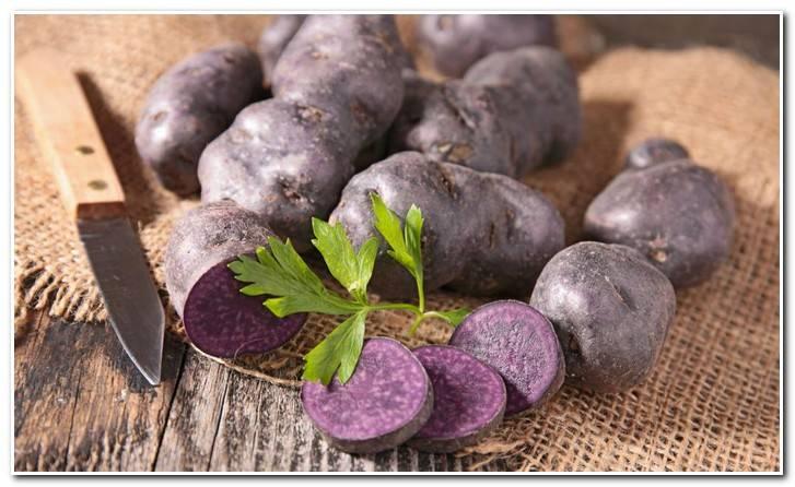 Особенности и сорта фиолетового картофеля