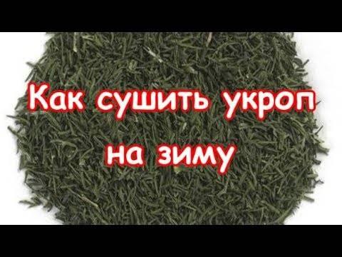 Как сушить зелень (укроп,зеленый лук, петрушку) на зиму в домашних условиях