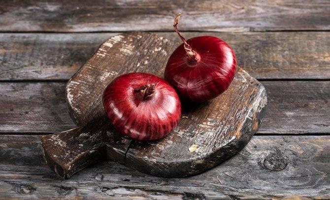 Чем отличается ялтинский лук от других видов и каковы особенности его выращивания в средней полосе россии?