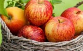 Яблоня айдаред: особенности сорта и ухода