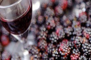 Профилактика и лечение болезней домашнего вина