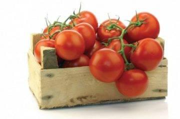 Томат красным красно f1 — описание сорта с фото