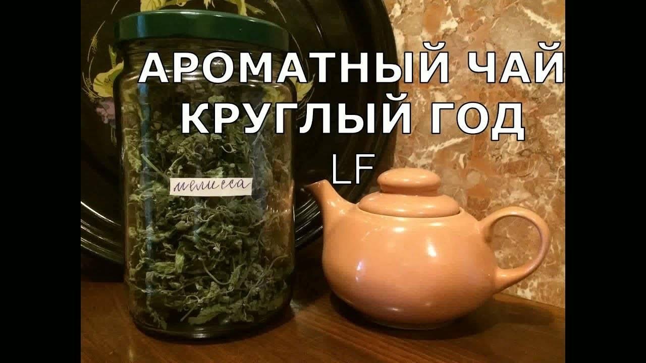 Компот из крыжовника мохито с мятой на зиму – 7 пошаговых рецептов