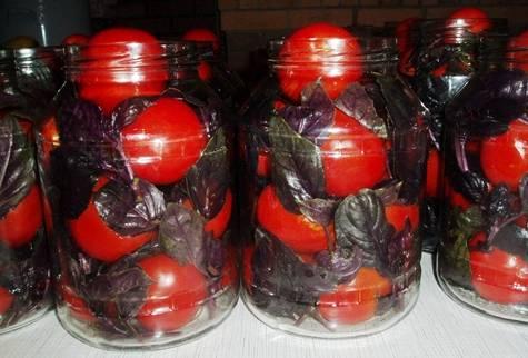 Рецепты маринования помидоров с базиликом на зиму. рецепт: помидоры с базиликом на зиму