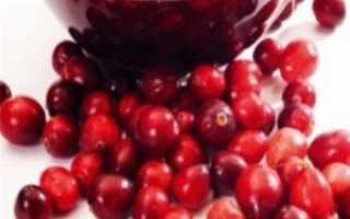 Брусника на зиму — полезные рецепты с варкой и без варки