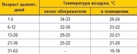 Температура для бройлеров (таблица)