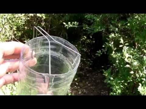 Приспособления для сбора плодов алычи черешни вишни. как сделать приспособление для сбора вишен с высокого дерева своими руками. какие нас ожидают затраты