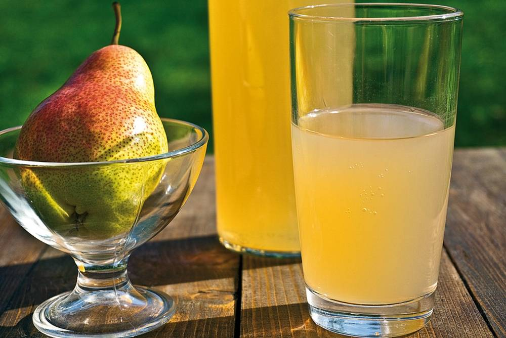 Правильная технология приготовления домашнего вина из яблок