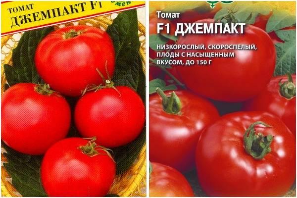 Описание сорта томата Джемпакт, его характеристика и урожайность