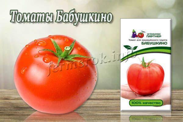 Характеристика и описание сортатомата Бабушкино, его урожайность