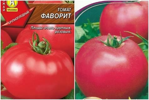 Фото, видео, отзывы, описание, характеристика, урожайность гибрида томата «фаворит f1»