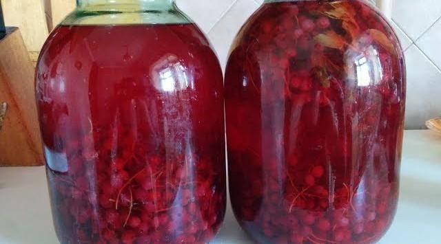 Рецепт приготовления вкусного компота из черемухи на зиму