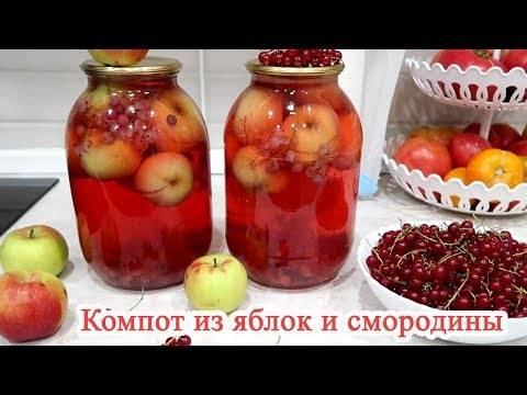 Вкусный компот на зиму. 2 простых рецепта: компот из красной смородины и компот из яблок на зиму.