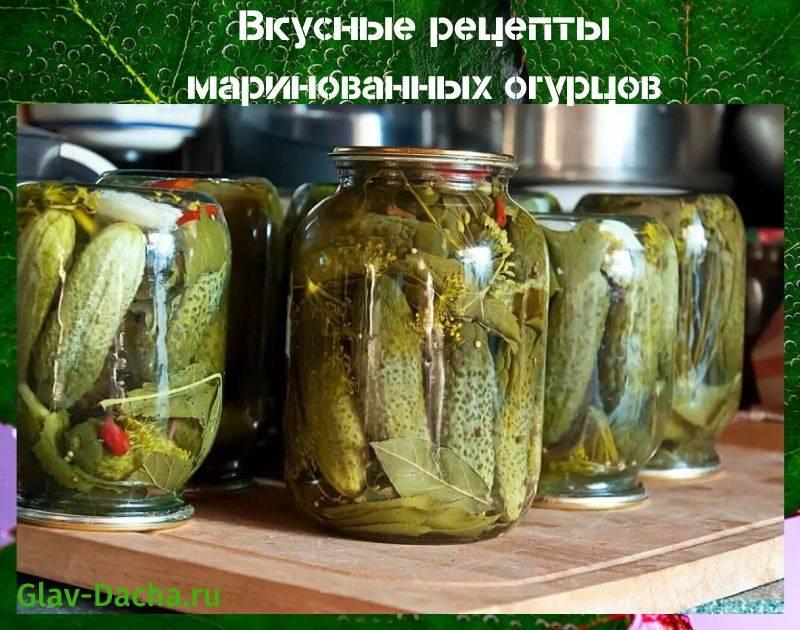 Закатка огурцов на 1 литровую банку на зиму - 5 рецептов с фото пошагово
