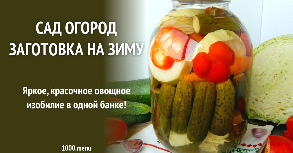 Рататуй в духовке: рецепт классический с фото пошагово