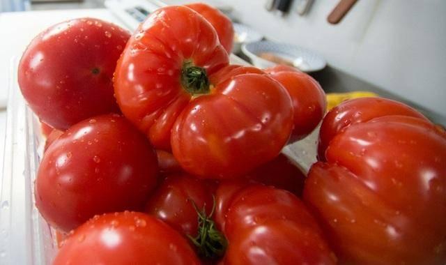 Томат таймыр: описание и характеристика сорта, мнение садоводов с фото