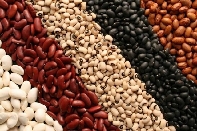 Чем полезна фасоль для организма — полный обзор всех свойств и описание продукта