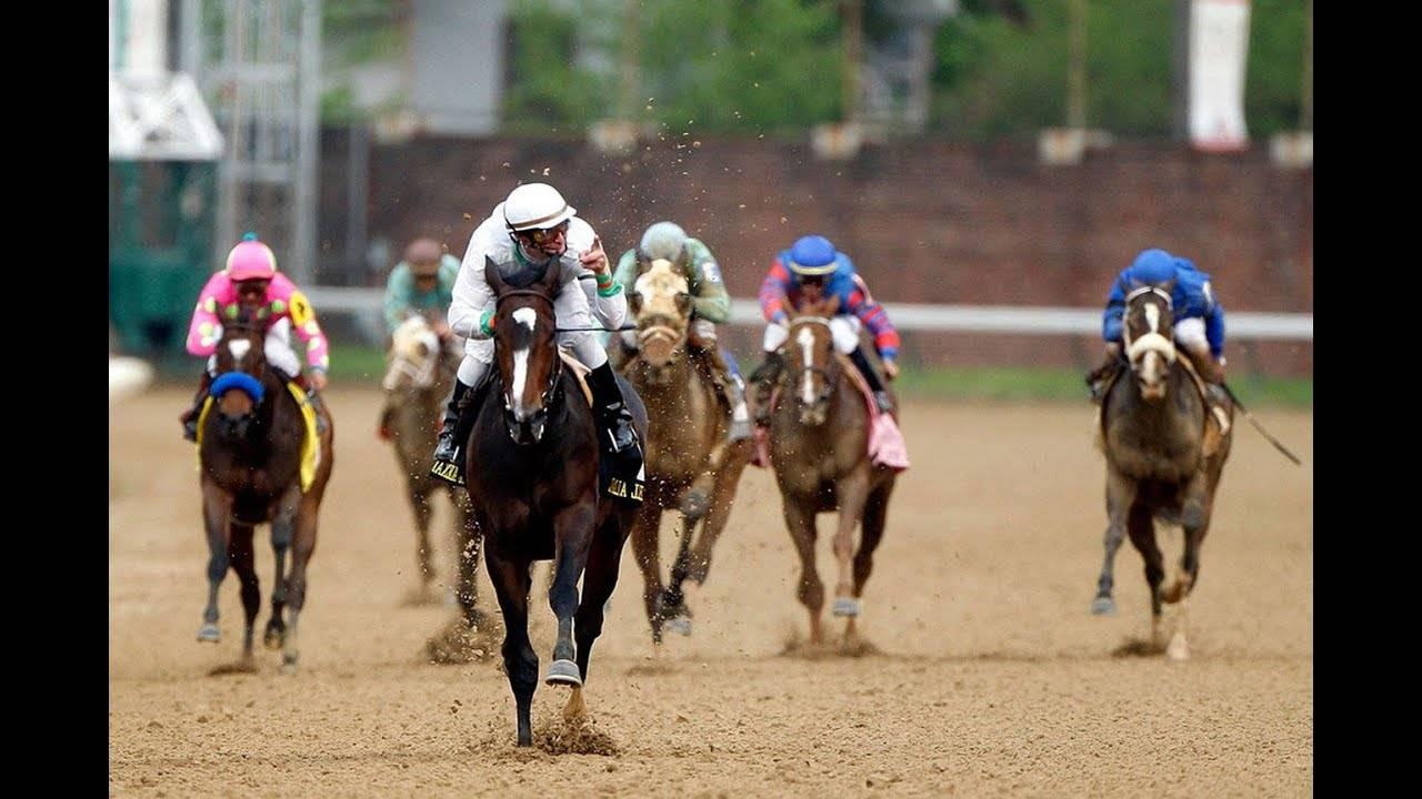 Породы самой быстрой лошади в мире