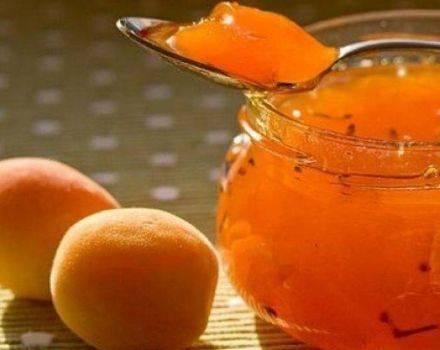 Яблочное пюре — 7 простых рецептов приготовления на зиму в домашних условиях