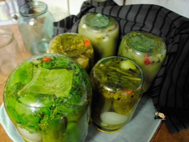Огурцы в горчичной заливке на зиму: 7 рецептов