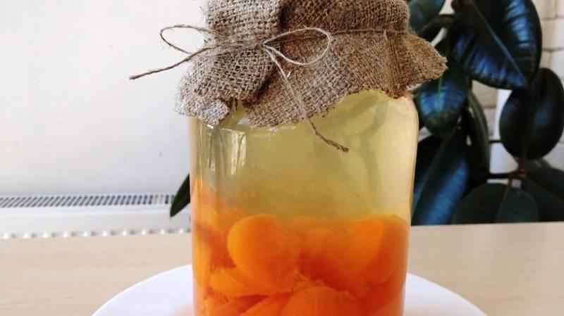 Фанта из абрикосов и апельсинов на зиму: топ 6 рецептов приготовления компота