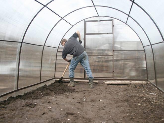 Весенняя подготовка теплицы к новому сезону: обработка почвы перед посадкой рассады