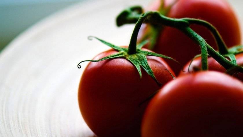 Томат царь колокол: отзывы, фото, урожайность, характеристика и описание сорта, достоинства и недостатки