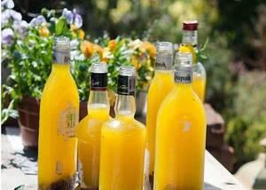 8 простых рецептов приготовления вина из сухофруктов в домашних условиях