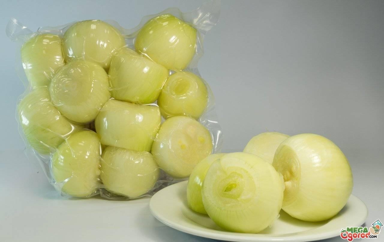 Отличие белого лука от обычного, особенности выращивания и хранения
