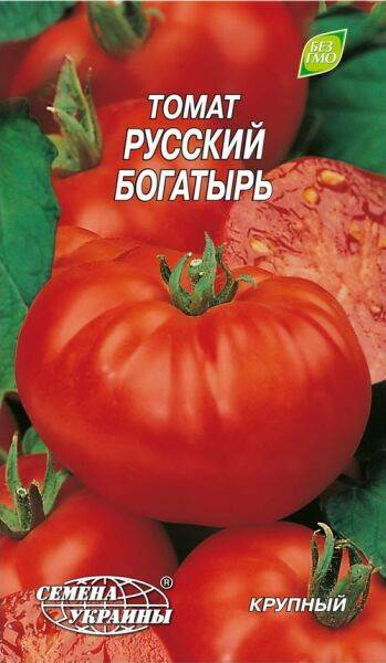 Томат биф-типа русский богатырь: урожайность, описание, отзывы