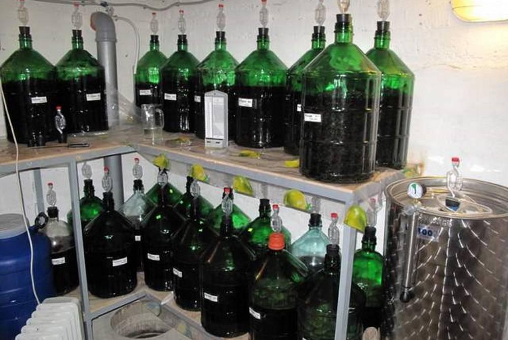 Простые рецепты приготовления вина из терна своими руками