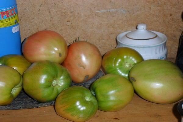 Характеристика и описание сорта томата фенда, его урожайность